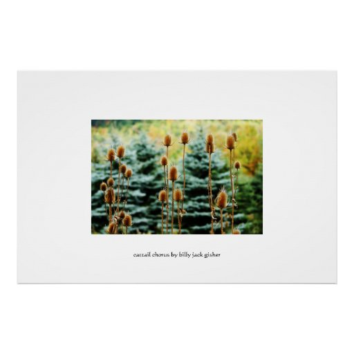 Cattail Chorus - autumnal limited edition poster