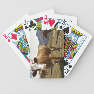 Cattle Bicycle Playing Cards