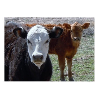 Cattle Calves - Shower Gift Registry - Western Business Card Templates