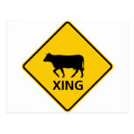 Cattle Crossing Highway Sign Post Cards