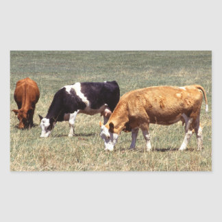 Cattle Farm Rectangular Sticker