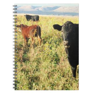 Cattle Herd Calves Spiral Note Books