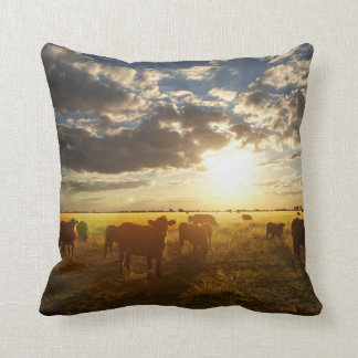 Cattle In Field, Sunset Cushion