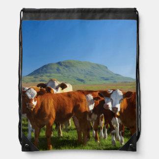 Cattle In Kamberg Valley, Kwazulu-Natal Drawstring Bag
