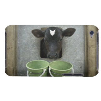 Cattle, Individual Pen Case-Mate iPod Touch Case