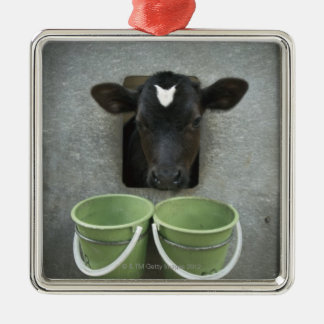 Cattle, Individual Pen Christmas Ornament