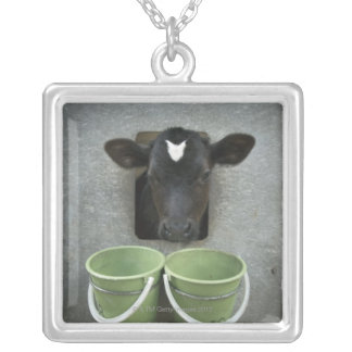 Cattle, Individual Pen Silver Plated Necklace