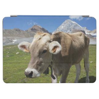 Cattle of the Bruna Alpina iPad Air Cover