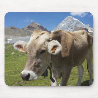 Cattle of the Bruna Alpina Mouse Mat