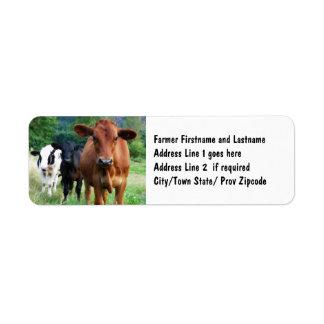 Cattle on Field Return Address Label
