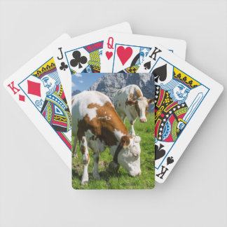 Cattle On High Pasture In Karwendel Mountain 2 Bicycle Playing Cards
