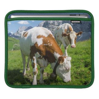 Cattle On High Pasture In Karwendel Mountain 2 iPad Sleeves