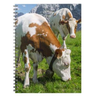 Cattle On High Pasture In Karwendel Mountain 2 Spiral Notebook