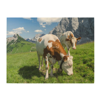 Cattle On High Pasture In Karwendel Mountain 2 Wood Print