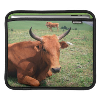 Cattle On Hill, Eastern Cape, South Africa iPad Sleeve