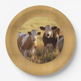 Cattle Paper Plates 9 Inch Paper Plate