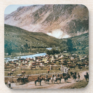 Cattle Ranch, Colorado, 1899 (photo) Coasters