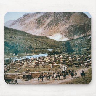 Cattle Ranch, Colorado, 1899 (photo) Mouse Pad