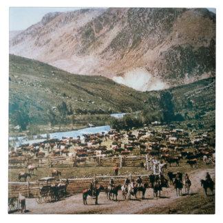 Cattle Ranch, Colorado, 1899 (photo) Tile