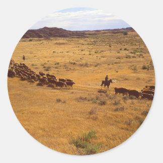 Cattle roundup classic round sticker