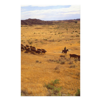 Cattle roundup stationery