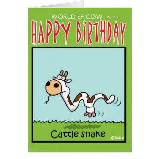 Cattle Snake Card