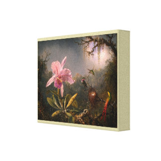 Cattleya Orchid and Three Brazilian Hummingbirds Canvas Print