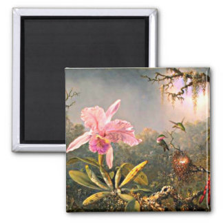 Cattleya Orchid and Three Hummingbirds Square Magnet