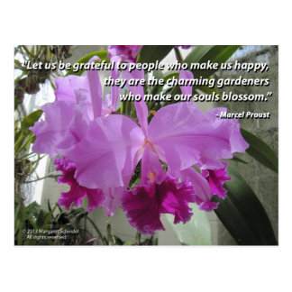 Cattleya Orchid Love and Friendship Postcard