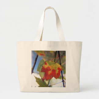 Caught in the act of changing canvas bag