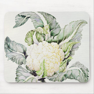 Cauliflower Study 1993 Mouse Pad
