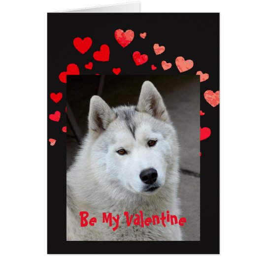 Cause I Woof Love You Husky Dog Valentine
