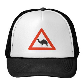 Caution Camels, Traffic Sign, United Arab Emirate Hats