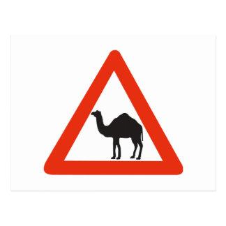 Caution Camels, Traffic Sign, United Arab Emirate Postcard
