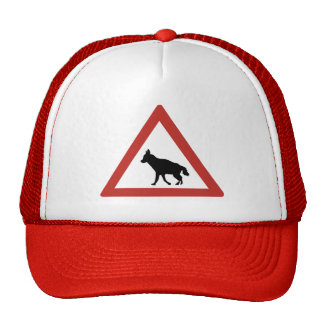 Caution Hyenas 1, Traffic Warning Sign, Namibia Cap