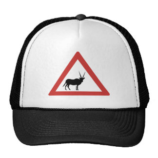 Caution Oryx, Traffic Warning Sign, Namibia Cap