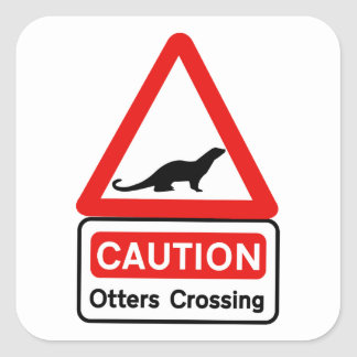 Caution Otters (2), Traffic Sign, UK Square Sticker