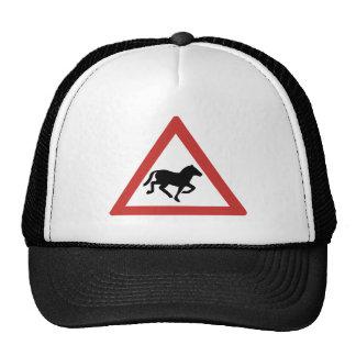 Caution Wild Horses, Traffic Warning Sign, Namibia Cap