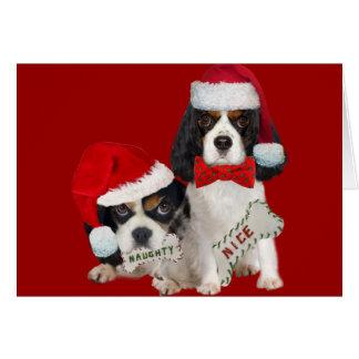 Cavalier King Charles Christmas Naughty or Nice Greeting Card