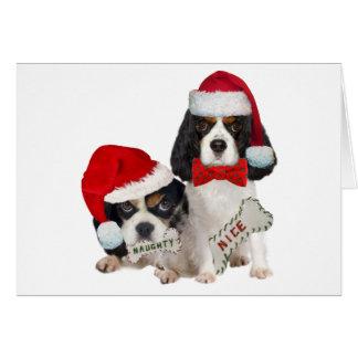 Cavalier King Charles Naughty or Nice gifts Greeting Card