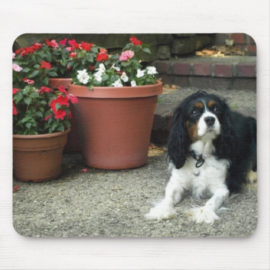 Cavalier King Charles Puppy Dog w/ Flowers Mouse Mat