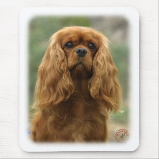 Cavalier King Charles Spaniel 9F51D-10 Mouse Mats