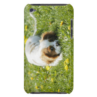 Cavalier King Charles Spaniel Barely There iPod Case