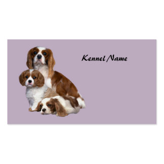 Cavalier King Charles Spaniel Breeder Business Car Business Card Templates