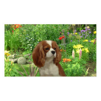 Cavalier King Charles Spaniel BreederBusiness Card Business Cards