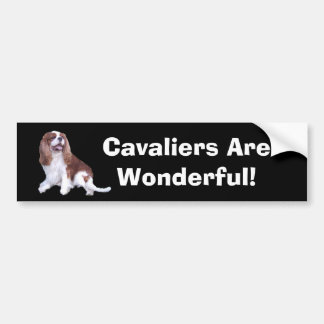 Cavalier King Charles Spaniel Bumper Sticker Car Bumper Sticker