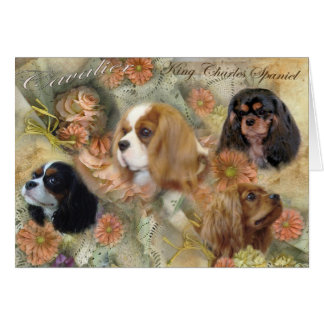 Cavalier King Charles Spaniel Card