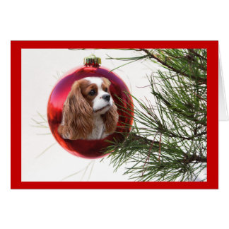 Cavalier King Charles Spaniel Christmas Card Ball