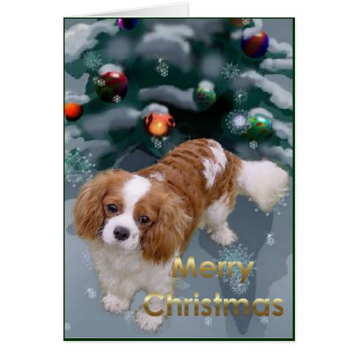 Cavalier King Charles Spaniel Christmas Gifts Greeting Cards