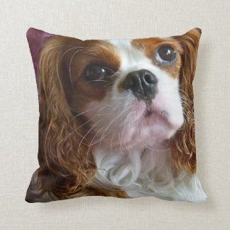 Cavalier King Charles Spaniel cushion pillow